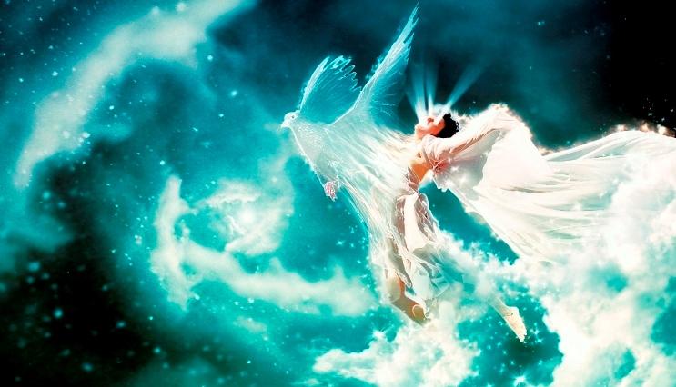 44347 Dream Father, Faucet, Favor ........
