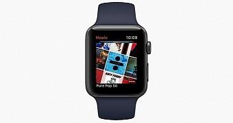 53201 Apple Seeds First watchOS 4.3 Beta Software Update to Devs, iOS 11.3 Public Beta - Updated