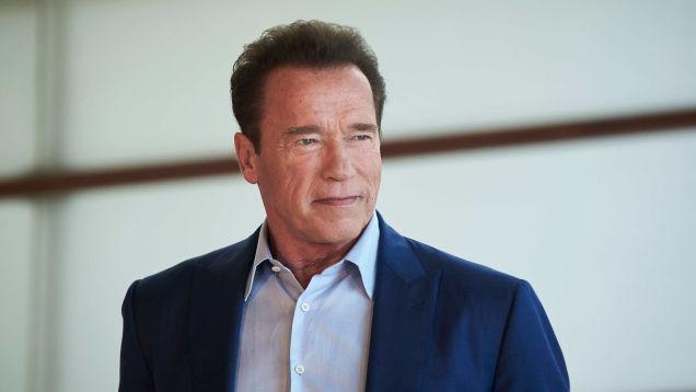 Arnold Schwarzenegger shares statement on Eliza Dushku's True Lies assault allegation