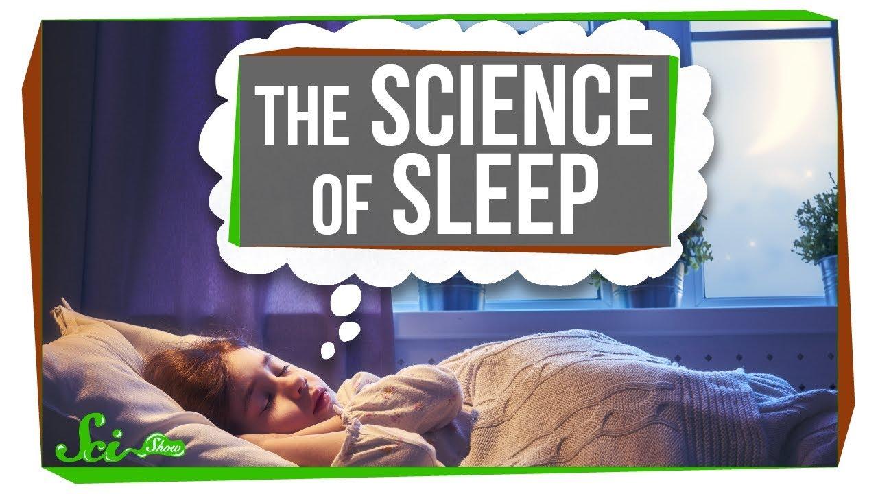 74861 The Science of Sleep