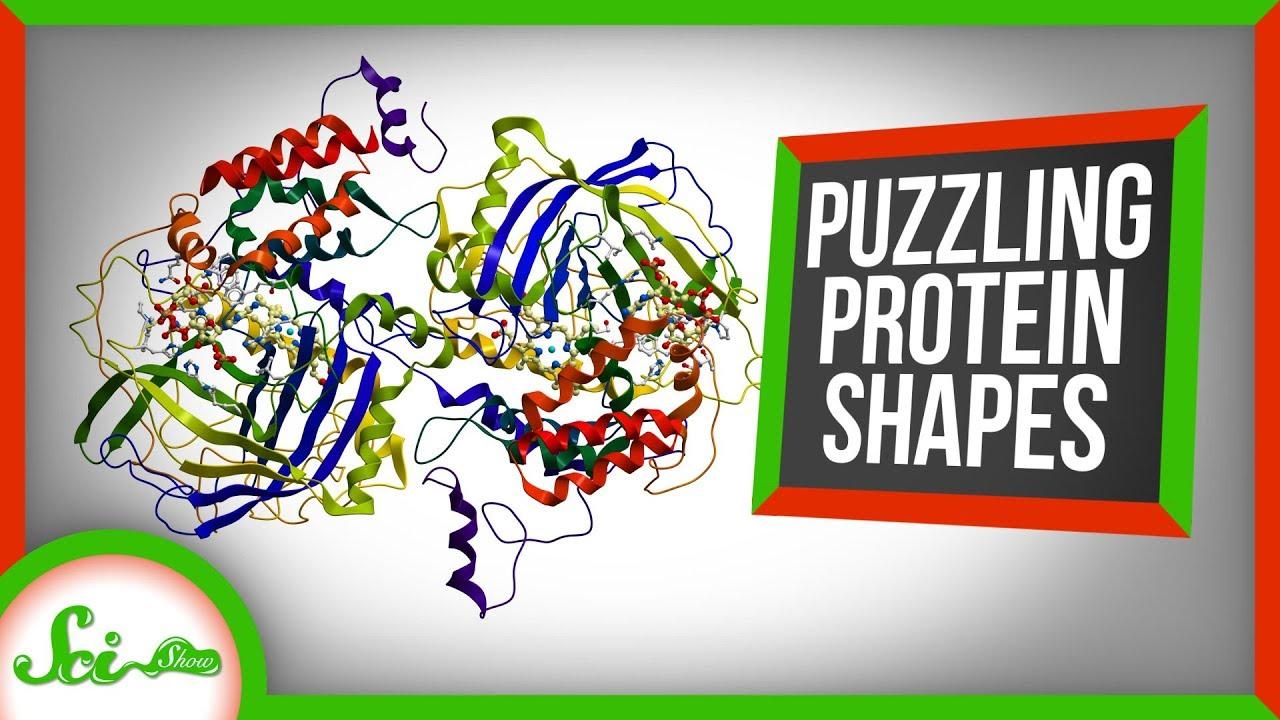 78798 How Protein Shapes Help Us Make Medicine