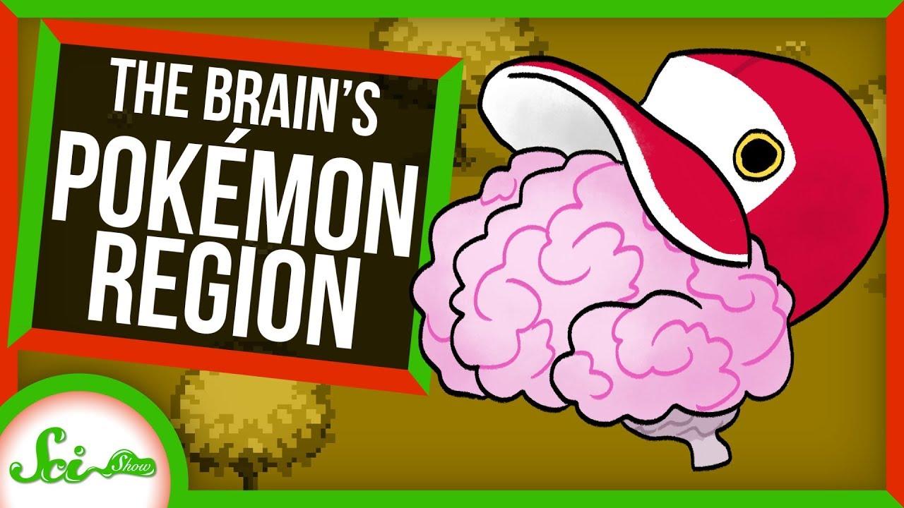 78372 Pokémon Brain Region Reveals How Our Brains Categorize | SciShow News