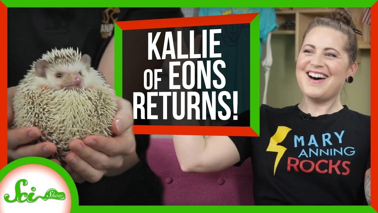79215 Ammonite Fossils and Sharp Animals w/Kallie from PBS Eons | SciShow Talk Show