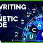 96159 The Genetic Code Sucks. Let's Do Better